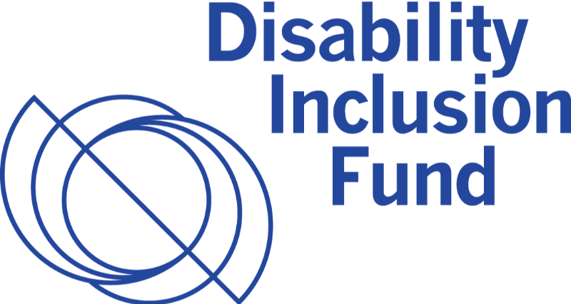 Logo for Disability Inclusion Fund. Image shows a line making circular motions, drawing three different interconnected circles.