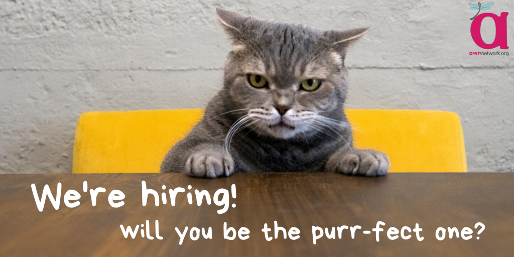 """Photo of a grey tabby cat sitting at a table and looking in the camera. Text says """"We're hiring! Will you be the purr-fect one?"""""""